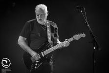 David Gilmour - Verona