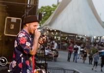 Disperato Circo Musicale - Sherwood Festival*19