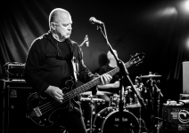 15 - Wire - Covo Club - Bologna - 20181005