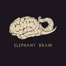 Elephant Brain - Elephant Brain