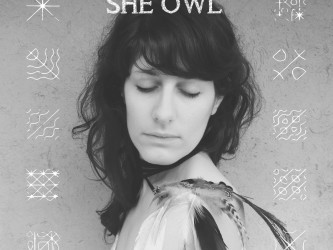 She Owl - Animal Eye