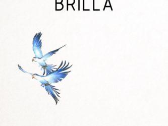 Brilla - Brilla